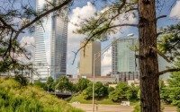 City through trees
